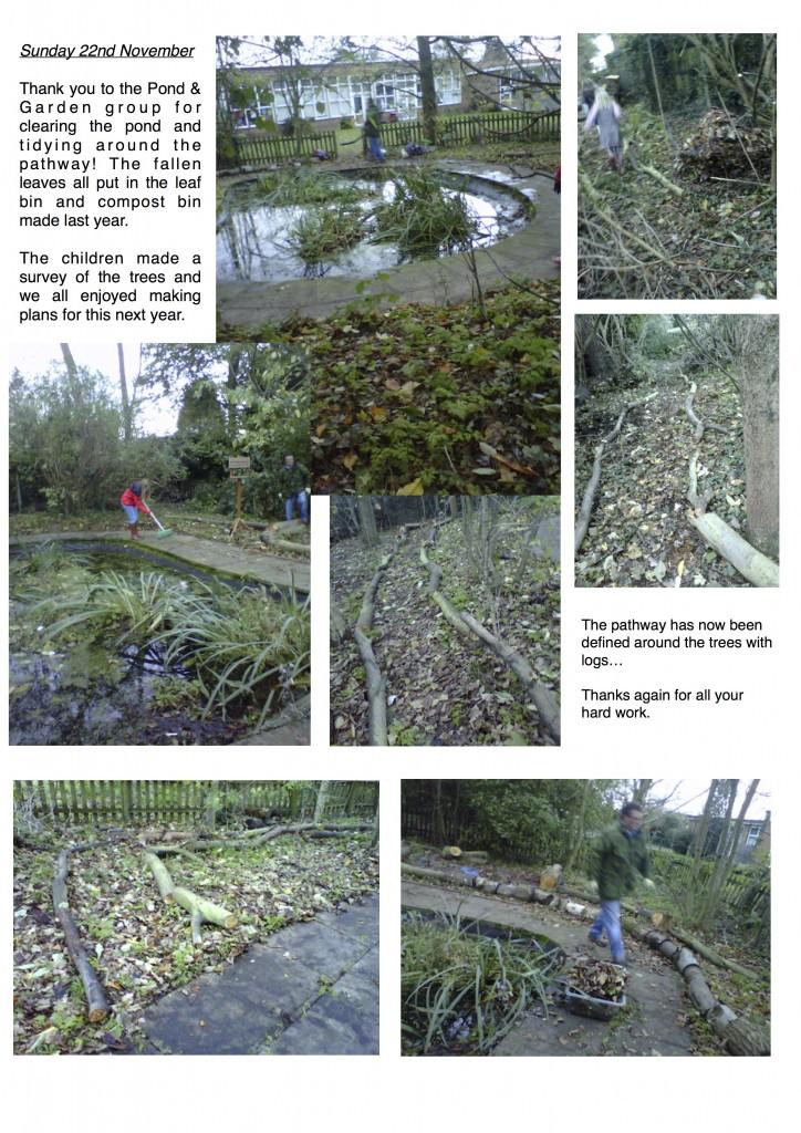 pond and garden 221115